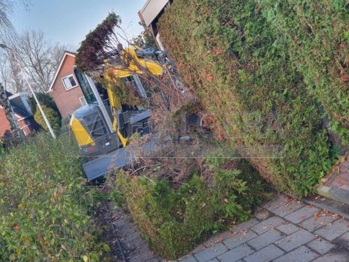 friesland-tuinmaterialen-heg-struik-verwijderen-03